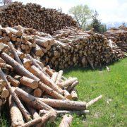 Дървесина в град Самоков