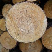 Дърва за отопляване