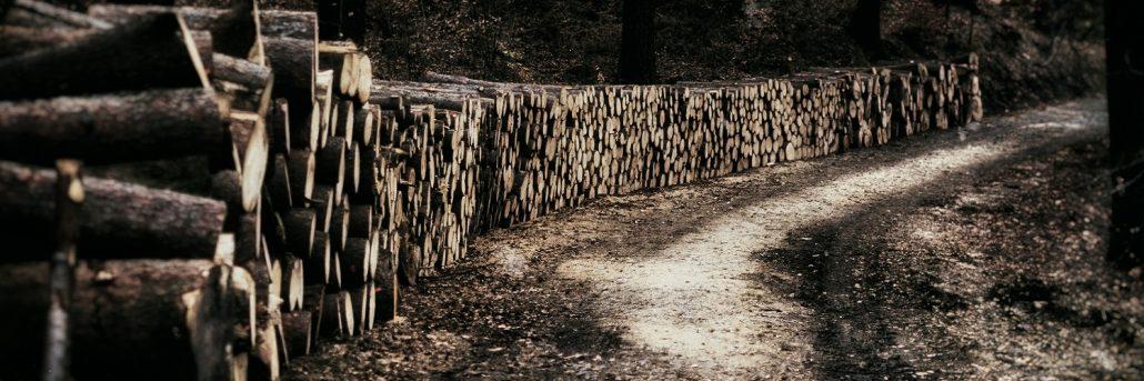 иглолистна дървесина за пелети